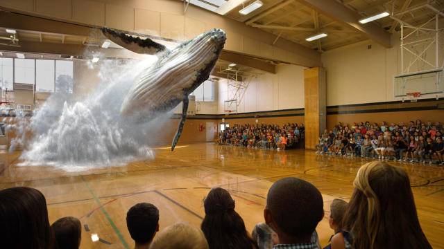3056230-inline-i-1-magic-leap-scores-7935-million-to-science-the-heck-out-of-mixed-reality-lightfield-magicleapwhal