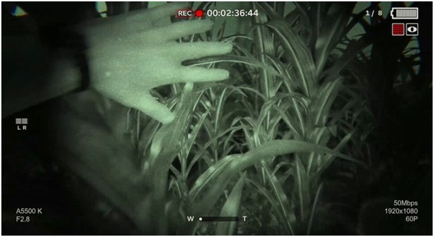 Outlast II - Gameplay