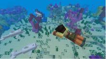 Minecraft Aquatic Phase 2
